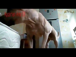 Video 19 (part 4)