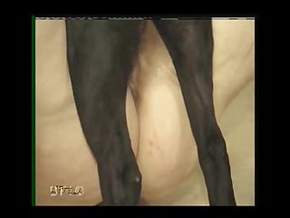 Dog Fuckig Girl (part 6)