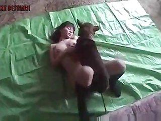 Xxx Dog Xxx